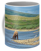 Grizzly Bear Stalking A Gull In The Moraine River In Katmai National Preserve-alaska Coffee Mug