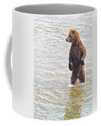 Grizzly Bear Standing To Get A Better Look In The Moraine River In Katmai Coffee Mug