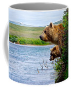 Grizzly Bears Peering Out Over Moraine River From Their Safe Island Coffee Mug