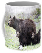 Grizzly Family Portrait Coffee Mug