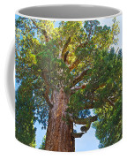 Grizzly Giant Sequoia Top In Mariposa Grove In Yosemite National Park-california    Coffee Mug