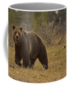 Grizzly Sow And Cub  #6382 Coffee Mug