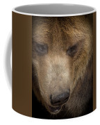 Grizzly Upclose Coffee Mug