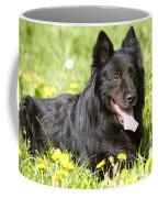 Groenendael Dog Coffee Mug