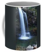 Grotto Falls Great Smoky Mountains Coffee Mug