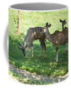 group of Kudu Antelope Coffee Mug