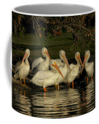 Group Of White Pelicans Coffee Mug