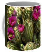 Grouping Of Cactus With Pink Flowers Coffee Mug