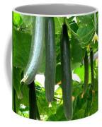Growing Cucumbers Coffee Mug