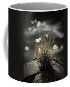 Growing Out Of Nothing Coffee Mug