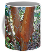 Growing Through The Fence Coffee Mug