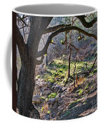 Guadalupe State Park Coffee Mug