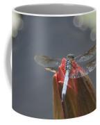Guard Dragonfly... Coffee Mug