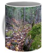 Guardian Rock Coffee Mug