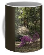 Guignard Park-2 Coffee Mug