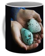 Guillemot Egg Coffee Mug