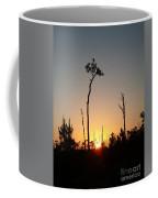 Gulf Shores Sunset Coffee Mug
