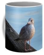 Gull On The Pier Coffee Mug
