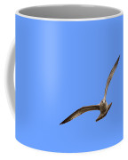 Gull Portraying An Owl Coffee Mug