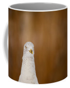 Gull Stare Coffee Mug