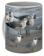 Gulls And Terns Coffee Mug