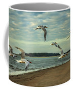 Gulls In Flight Coffee Mug