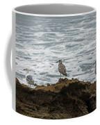 Gulls Podium  Coffee Mug