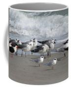 Gulls Terns Skimmers Coffee Mug