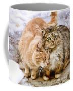 Gutter Kitties Five Coffee Mug