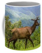Had Enough Coffee Mug