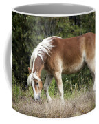 Haflinger 1 Coffee Mug