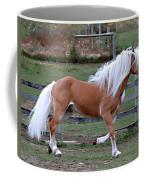 Haflinger Stallion Coffee Mug