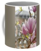 Hagia Sophia Magnolia Coffee Mug