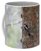 Hairy Woodpecker Coffee Mug