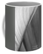 Half And Half Coffee Mug