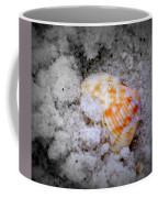 Half Buried Shell Coffee Mug