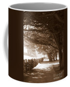 Half Moon Bay Pathway Coffee Mug