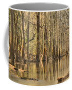 Hall Of Cypress Coffee Mug