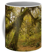 Hall Of Mosses 5 Coffee Mug