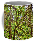Hall Of Mosses In Hoh Rain Forest In Olympic National Park-washington Coffee Mug