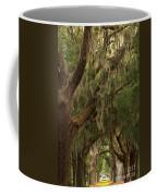 Hallway Of Oaks Coffee Mug