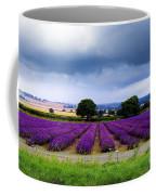 Hampshire Lavender Field Coffee Mug by Terri Waters