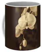 Hanging Orchid Coffee Mug