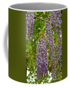 Hanging Wisteria Blossoms Coffee Mug