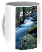 Hanson Brook Coffee Mug