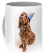 Happy Birthday Dog Coffee Mug by Edward Fielding