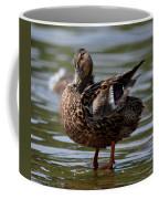 Happy Girl - Female Mallard Coffee Mug