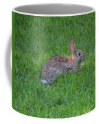Happy Rabbit Coffee Mug