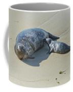 Harbor Seal Suckling Young Coffee Mug