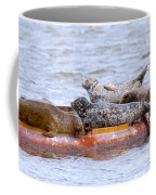Harbour Seals Lounging Coffee Mug
